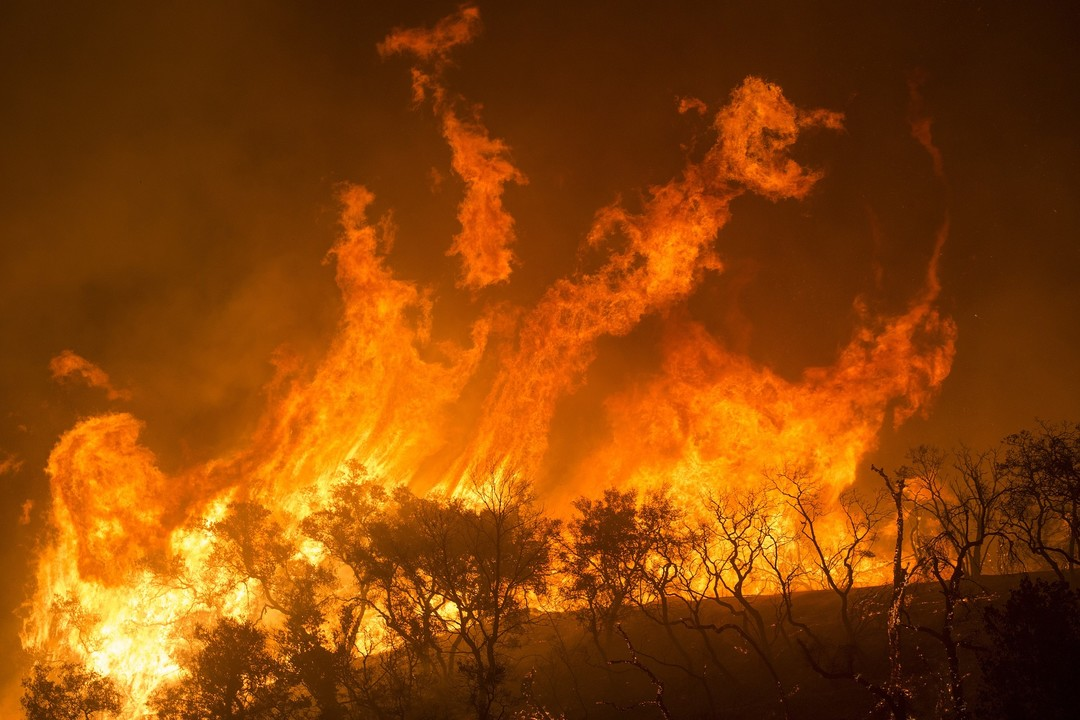 Image of California Wildfires